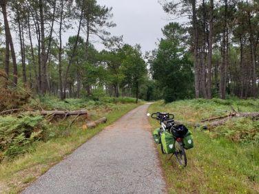 passage dans une forêt de pins, le Nizan (33) - l'autre ailleurs en Vélo, une autre idée du voyage (www.autre-ailleurs.fr)
