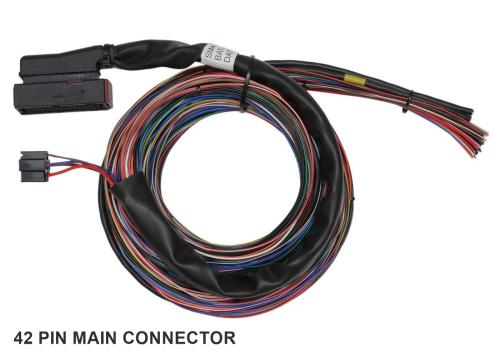 small resolution of wiring looms sm2