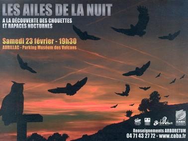 Ailes de la nuit,  Arboréyum, musée d'archéologie à Aurillac, Cantal