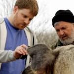 La traduction du language animal se fait sur votre téléphone