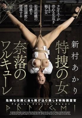 特捜の女 奈落のワルキューレ 新村あかり [JBD-264/jbd00264]