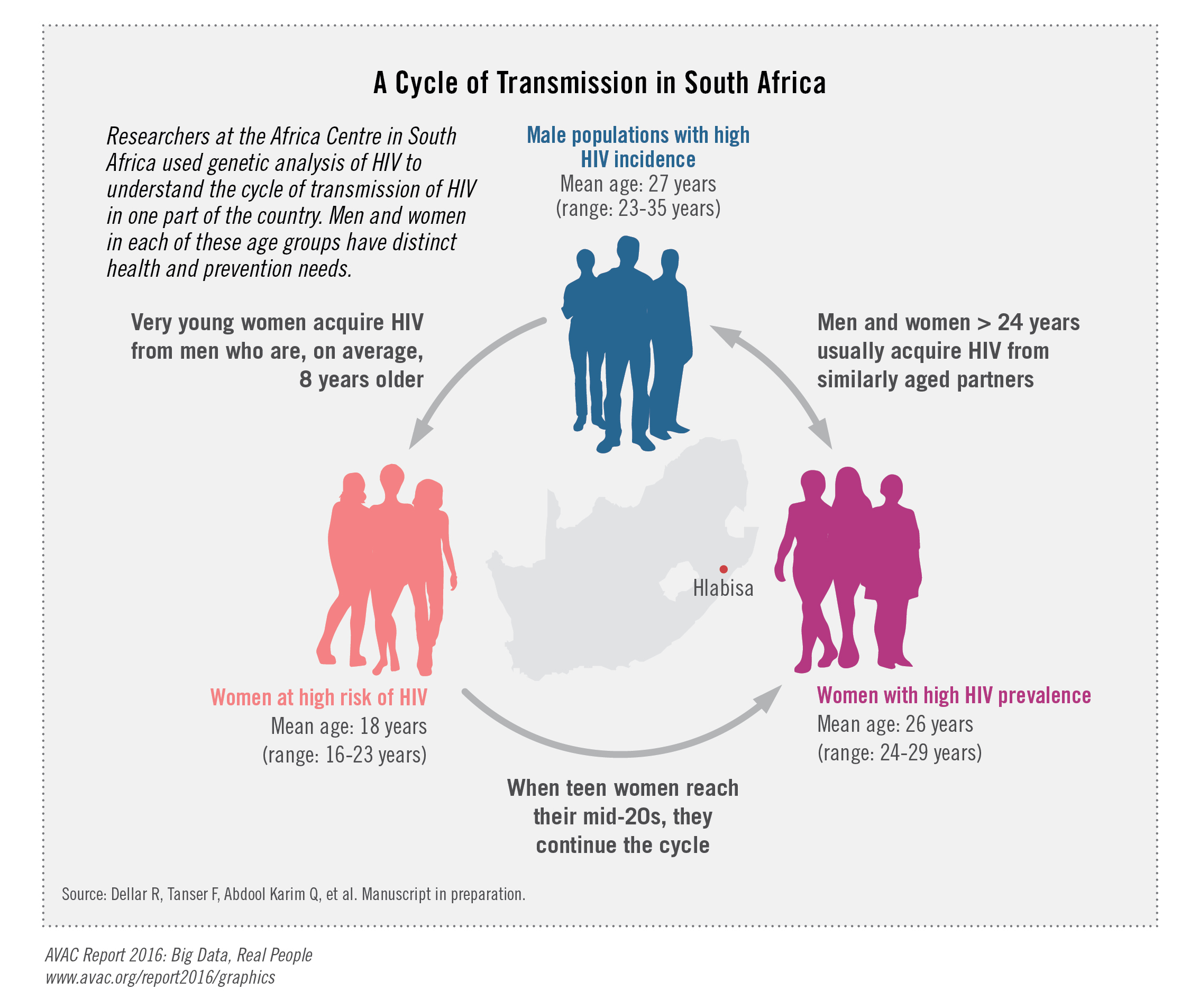 A Cycle Of Transmission In South Africa