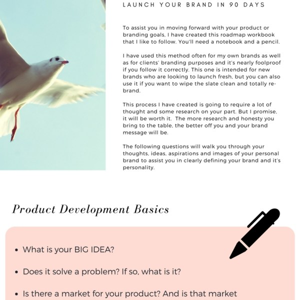 branding 101 basics workshop