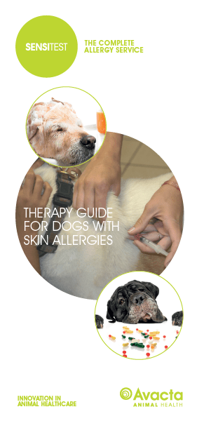 dog owners avacta animal health