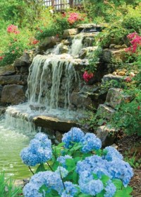Design Your Dream Home With Relaxing Garden And Backyard ...