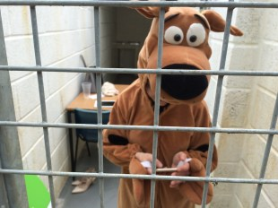 scooby-fundraises-natalie-giles-zest-lettings