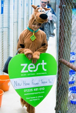 scooby-natalie-giles-zest-lettings