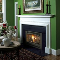 GAS FIREPLACES SEATTLE  Fireplaces