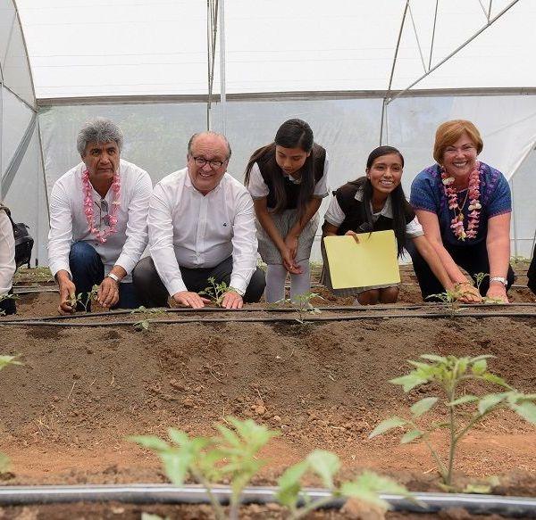 invernaderos para los comedores escolares y comunitarios