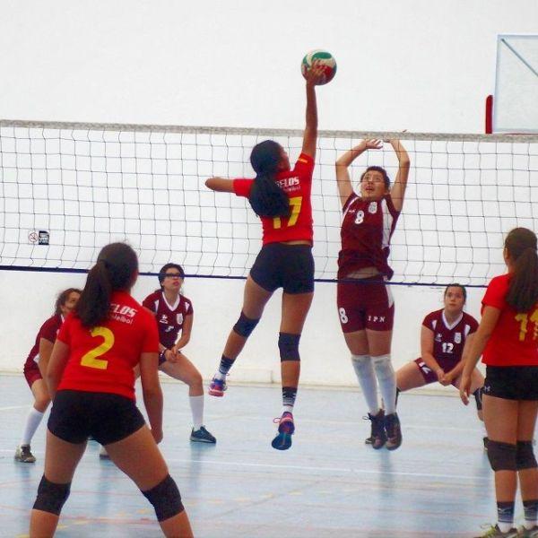 Compromisos que se jugarán en las instalaciones de la Unidad Deportiva Cuernavaca del IMSS en Plan de Ayala