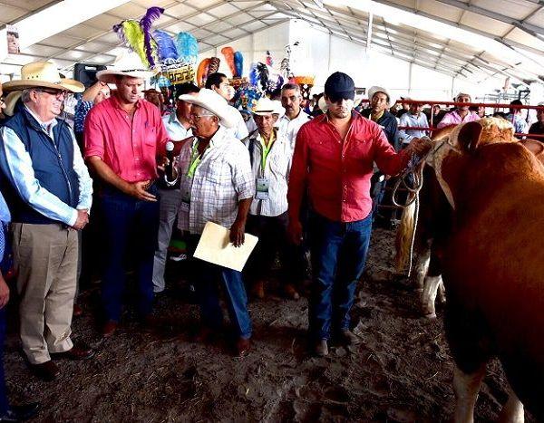Resaltó que el valor de la producción agropecuaria pasó de siete mil 400 millones de pesos en 2012 a 10 mil millones en 2017; es decir, Morelos dejó la posición número 14 y se colocó en el tercer lugar nacional; y hoy por cada peso que se invierte se obtienen 3.5 de ganancia, apuntó