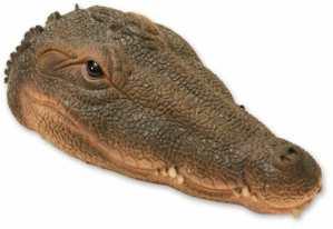 Woodside – Tête de crocodile flottante – décoration pour bassin/jardin