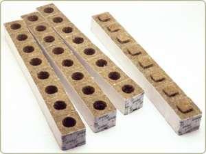 «laine de roche-GroDan 3 Cubes de repiquage x 8