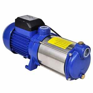 Pompe à Eau de Surface Bleue 1 300 W, 5 100 l/h Bleu pour jardan
