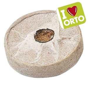 Verdemax Pastilles en fibre de coco avec tissu
