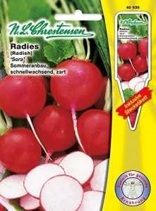 N.L. chrestensen 40536Semences de légumes, Jaune, 11,5x 0,5x 15,6cm