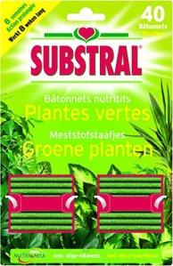 Substral Bâtonnets Nutritifs Plantes Vertes x40