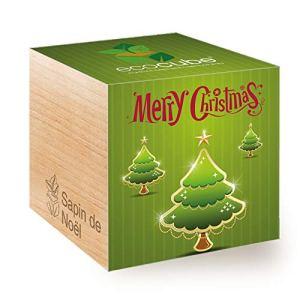 Feel Green Ecocube Joyeux Noël/2G, Épicéa (Sapin de Noël), Idée Cadeau (100% Ecologique), Grow-Your-Own/Kit Prêt-à-Pousser, Plantes Dans Des Cubes En Bois 7.5cm, Produit En Autriche