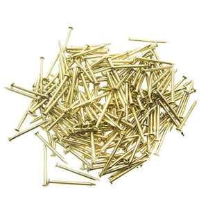 Ogquaton 100 Clous en Acier doré pour Cordes – 20 mm