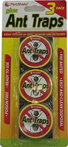 Pestshield appâts à fourmis Lot de 3 pièges à attirer &Tue fourmis