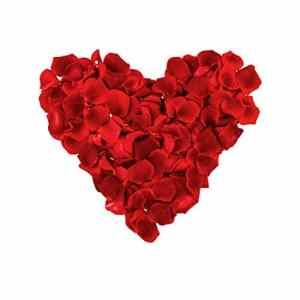 Véritable Pétale de Roses provenant de roses fraiche, pour tous vos éventements important fêtes, Noël, Mariage, Saint valentin