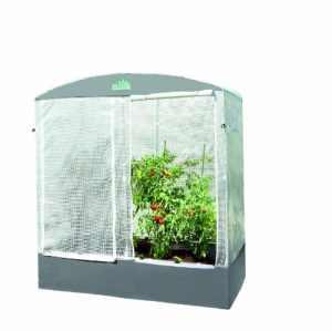 Bio Green PTF 200 Patioflora Serre à tomates pour terrasse et jardin 220 x 200 x 100 m