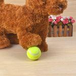 LibingzeD Nouveau Chien Balle De Tennis Petsport Souffleur Chucker Launcher Jouer Jouet