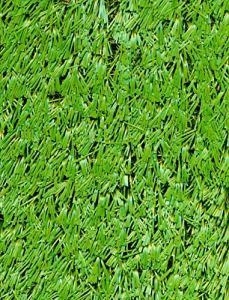 PEGANE Rouleau Gazon Artificiel d'extérieur en polypropylène Coloris Vert – Dim : 2m x 25m