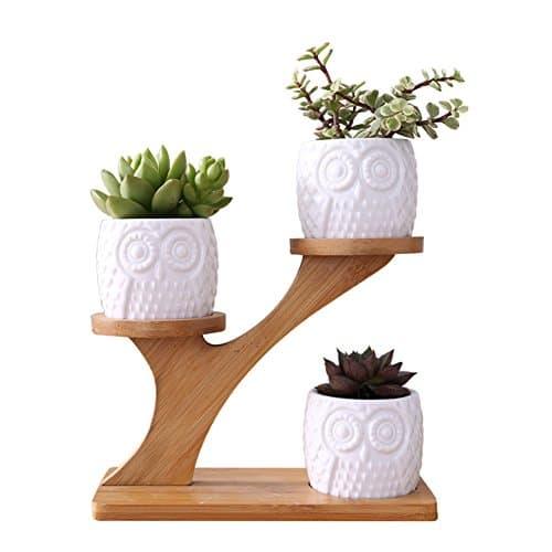 Pot de Fleur pour Plante Grasse Succulente Petit Cactus, 3 Mignon Pots Hibou en Céramique avec Etagère Porte Plateau Pot en Bois Bambou Original Décoration Maison Jardin Bureau Cadeau (sans plantes)