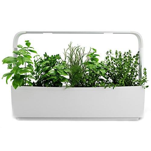 tregren t12 potager d 39 int rieur connect 12 plantes kit. Black Bedroom Furniture Sets. Home Design Ideas