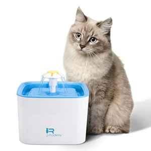 Rhodesy Fontaine à Eau pour Chat, de Chat 2.5L Ultra Silencieuse Automatique, Fontaine d'animal Familier pour des Chats et des Chiens avec 1 Filtre de Rechange et Pompe Silencieuse Économie D'énergie
