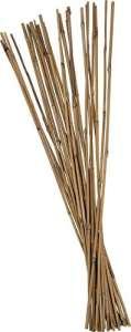 Btons tonkins en bambou – 75-120cm – Tuteurs pour plantes