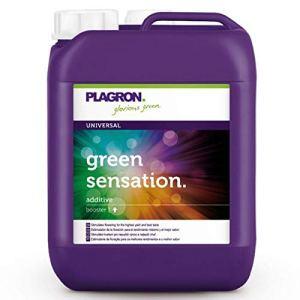 Green Sensation 5 litres – Plagron