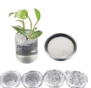 Inception Pro Infinite (100GR hydrogel Cristal de Potassium polymère absorbante Polyacrylate SAP pour créer superterra pour Jardinage Fleurs Agriculture Culture
