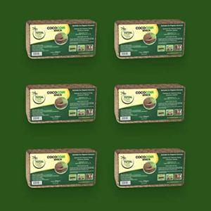 We Personalized Ltd Lot de 6 Briques de Coco 650 g chacune, matériau Biologique, Fibre de Coco, 100% Naturelle, Milieu de Croissance, Plantation de Coco, Briques de Coco