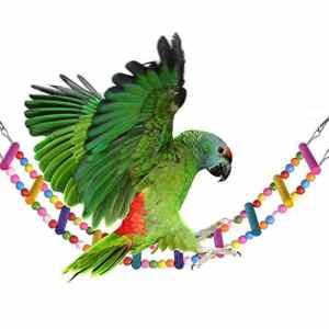 2pcs coloré Jouet d'oscillation, Pont Arceau Arceau Perroquet Perroquet Cage Cage 10 étapes, Balançoire d'escalade de 60cm pour Cage à Oiseaux