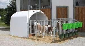 Calf House Baraque pour veau haut de gamme 4/5 avec mangeoire incluse