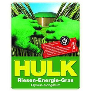 Hulk Riesen-Energiegras 18 kg Ha-Pack Biogas Graines D'Herbe Semences Massegras