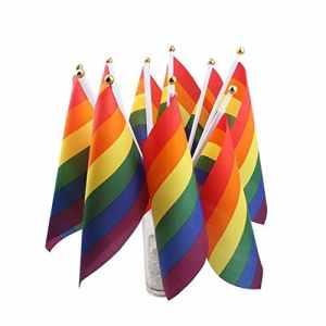 Namgiy 2x Drapeau arc-en-ciel gay pride Drapeau bannières fanions drapeaux de banderoles de fête fanions pour les événements sportifs de vacances anniversaire Décor Petite