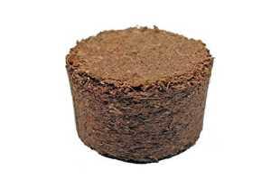 Boulettes gonflants à la noix de coco d'environ Ø 22 mm, 1008 pièces (EUR 0,06 / pièce), terreau sans tourbe à base de fibres de coco pressées, rendement d'environ 25-30 ml par boulette