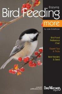 enjoying-bird-feeding-more