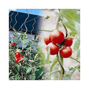 Générique Tuteur à Tomate avec chas – Lot de 15 170 cm Gris 170 cm