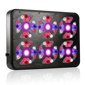 LED Culture Power G3 + COB – 810 W avec extra hommage