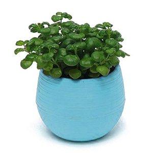 Westeng Mini plantes artificielles Pot de fleurs Pot de fleurs Conteneur Home Office Decor Résine Desk support de rangement, 1PC, bleu, Taille unique