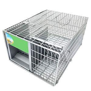 ZCF Petit Animal Vivant Humain Rat en Cage Souris Chipmunk intérieur et extérieur piège
