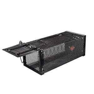 ZCF Piège à Cage Active – Cage pour piège à Taupe et à Tamia écureuil Souris