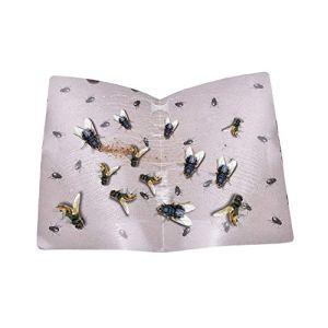 Insecte Tueur Frais de Livraison Gratuite Été chatoyante Colle Papier Mouches piège piège Attrape Insectes Catcher Conseil