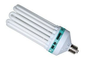 NTS CFL double 300 W/6500 K/2 700 K