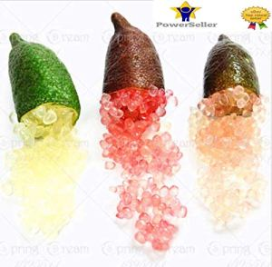 Portal Cool 3: 50Pcs Ice Lime Finger Citrus Caviar Tropical Graines Fruit Tree Garden Semente