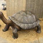 Très grande tortue des Galapagos avec gargouille en bronze